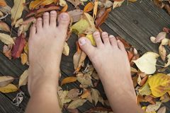 Two feet stand on leaves on the deck Royalty Free Stock Images