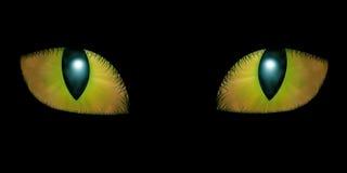 Two feline eyes. On black background stock illustration