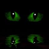 Two feline eyes. Reflected in water stock illustration