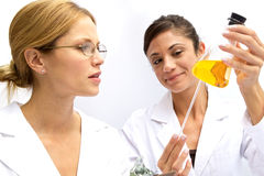 Two Femal Scientists Working Together Royalty Free Stock Images