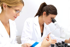 Two Femal Scientists Working Together Stock Photography