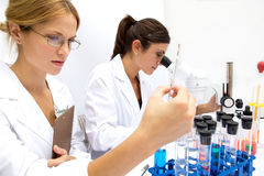 Two Femal Scientists Working Together Royalty Free Stock Image
