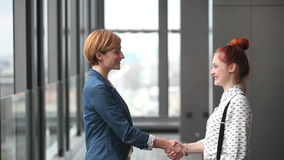 Two female advertising executives shaking hands. Profile of two attractive female advertising executives shaking hands stock footage
