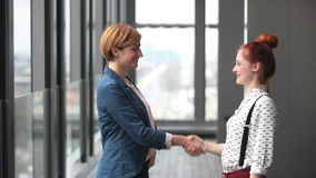 Two female advertising executives shaking hands. Profile of two attractive female advertising executives shaking hands stock video