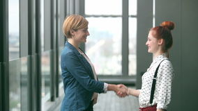 Two female advertising executives shaking hands. Profile of two attractive female advertising executives shaking hands, graded stock video