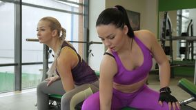 Two female athlets are doing concentration curls in modern gym. Women are sitting on the bench near the big window and exercising their biceps. Brunette lady stock footage