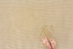 Two female bare feet on sand of beach Stock Images
