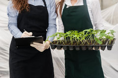 Two female bio technicians checking plants Royalty Free Stock Photo