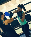 Two Female Boxers At Training Royalty Free Stock Images