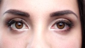 Two female brown eyes blink. Close up. Slow motion stock footage
