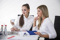 Two female colleagues at work Stock Photography