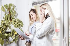 Two female collegues having a business conversation. Two female collegues standing next to each other  discussing about work and having a business conversation Royalty Free Stock Image