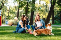 Two female friend in the park play with little dog. Two female friend in the park at lawn play with little dog royalty free stock photography