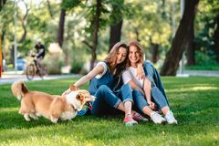Two female friend in the park play with little dog. Two female friend in the park at lawn play with little dog royalty free stock photo