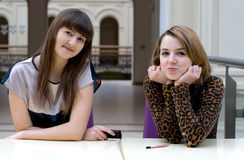 Two female friends Stock Photography