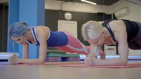 Two female friends are doing plank exercise on fitness class in the gym. Sportswomen are standing on elbows on mats on the wooden floor and talking to each stock footage