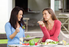 Two female friends enjoying lunch together royalty free stock images