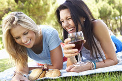 Two Female Friends Enjoying Picnic Together Stock Images