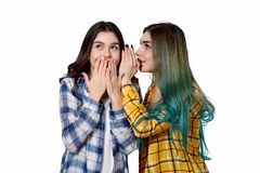 Two female friends gossiping. One girl tells the secrets of the other in her ear, siolated on white background. Two female friends gossiping. One girl tells the royalty free stock photo