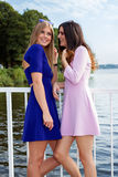 Two female friends gossiping. Royalty Free Stock Photo