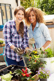 Two Female Friends Planting Rooftop Garden Together Royalty Free Stock Photography