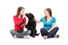 Two female friends sitting and playing with a dog Royalty Free Stock Image