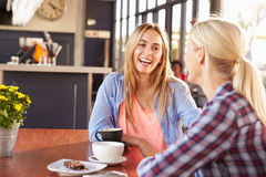 Two female friends talking at a coffee shop Royalty Free Stock Image