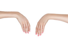 Two female hands. Stock Photography