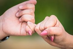 Two female hands friendship swear, holding little pinkie finger together.closeup, shallow depth of field. focused. blurred green b stock photo