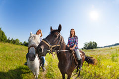 Two female horseback riders mounted on horses. Two female horseback riders mounted on their purebred horses at summer field Stock Photos