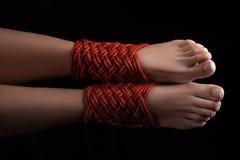 Two female legs shibari. Shibari pattern on two legs female closeup Stock Image
