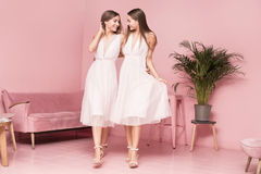 Two female models posing in elegant dresses. Royalty Free Stock Images