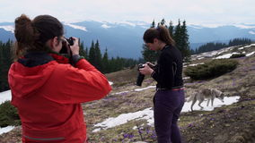 Two female photographers practicing in mountains stock video