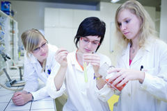 Two female researchers carrying out research Stock Image