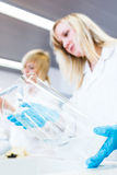 Two female researchers working in a laboratory Stock Photos