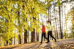 Two female runners jogging outdoors in forest in autumn nature. stock image