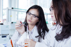 Two female scientists doing experiment Stock Photos