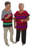 Two female seniors Royalty Free Stock Photography