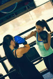 Two Female Sparring Stock Photography