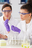 Two Female Technicians Working In Laboratory Stock Images