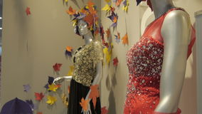 Two Females Mannequins in a Autumn Dress in a Modern Shop. Females mannequins in a slyling long autumn dress in a modern shop stock video
