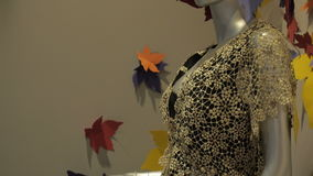Two Females Mannequins in a New Autumn Colletion Dress in a Modern Shop. Females mannequins in a slyling long autumn dress in a modern shop stock video