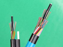 Two fiber optic loose tube cables with stripped ends and bare exposed colored optical fibers Royalty Free Stock Photos