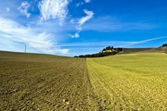 Two fields. Newly plowed in castilla, spain Stock Images