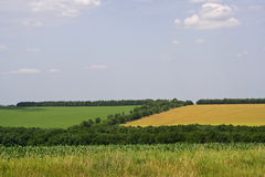 Two fields. Stock Images