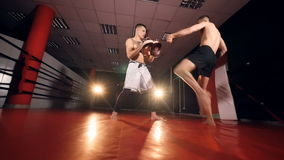 Two fighters treaining fo rbattle. MMA fighters training. HD stock video footage