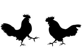 Two fighting cock against white background. Vector Illustration. Stock Photo