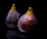 Two figs Stock Photo