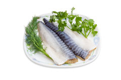 Two fillet of salted atlantic mackerel, dill and parsley Stock Image