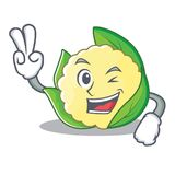 Two finger cauliflower character cartoon style. Vector illustration Royalty Free Stock Photo